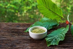 kratom leaf facts